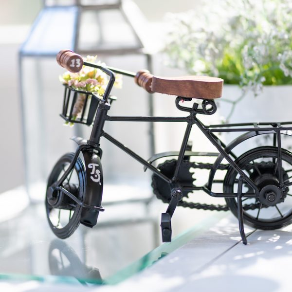 french inspired bike decor